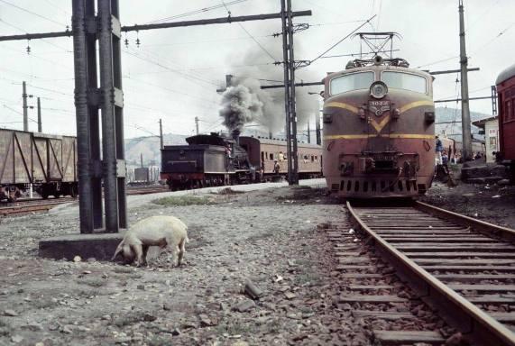 San Rosendo 1973